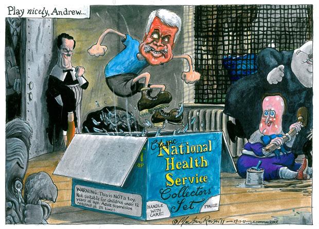 RowsonM NHSreforms.jpg