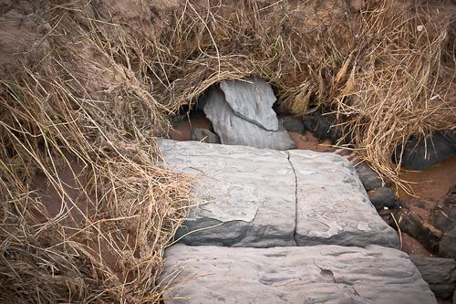 erosionABeach.jpg