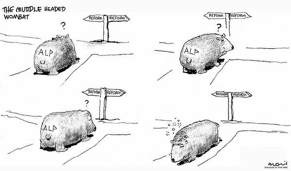 MoirAALPreform.jpg