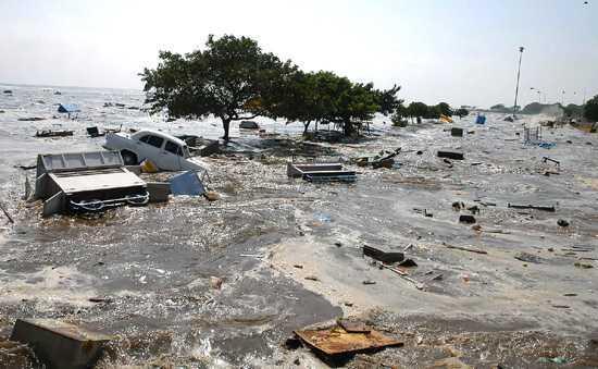 NewsTsunami1.jpg
